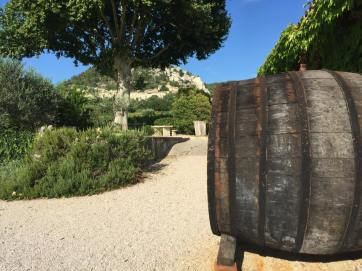 The village behind the vineyard in our hotel is only 500m away. It's said to be one of the most beautiful in France. I was so tired I'll just have to take their word for it.